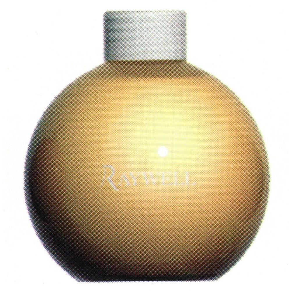 Raywell Reflex Шампунь пігментуючий Мелірування 250 мл