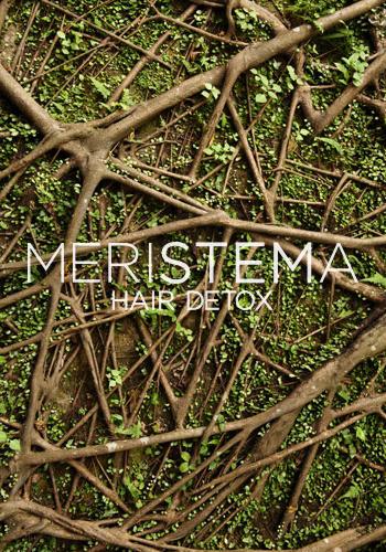 Meristema - Hair Detox